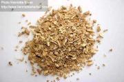 Zingiber officinale Willd. Roscoe (secco)